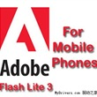 下載:Flash_Lite Player 2.1 For Window Mobile(PPC)
